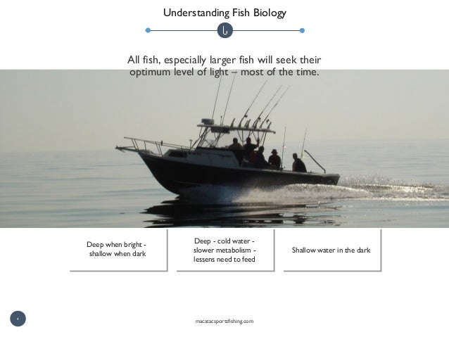 Understanding Fish Biology All fish, especially larger fish will seek their optimum level of light – most of the time. Dee...