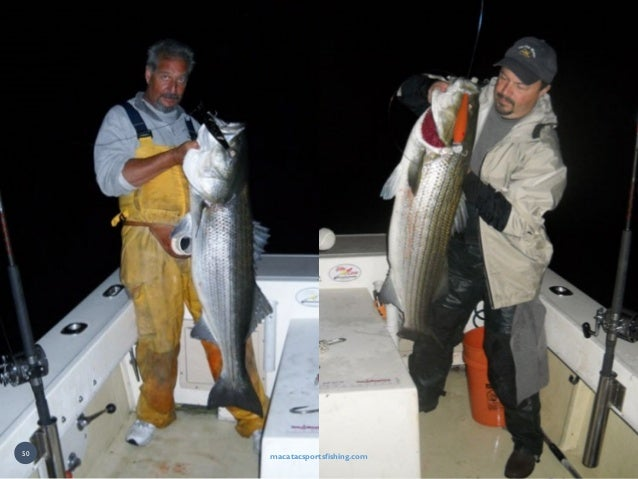 macatacsportsfishing.com macatacsportsfishing.com50