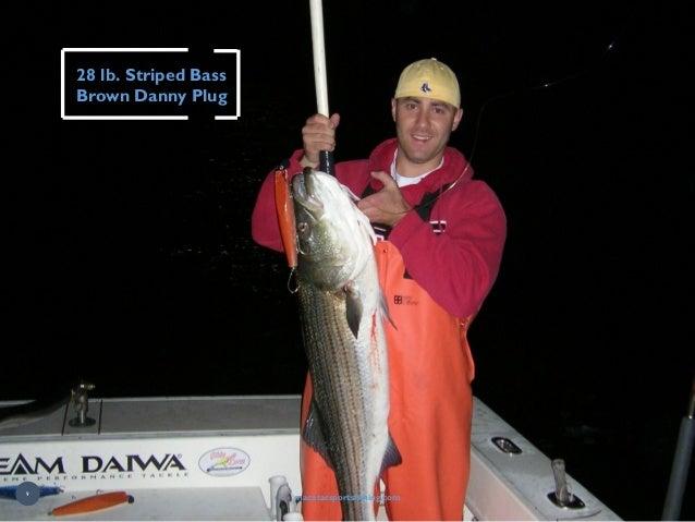 28 lb. Striped Bass Brown Danny Plug macatacsportsfishing.com 9
