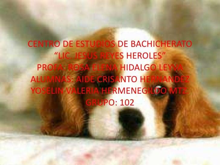 """CENTRO DE ESTUDIOS DE BACHICHERATO """"LIC. JESUS REYES HEROLES""""PROFA: ROSA ELENA HIDALGO LEYVAALUMNAS: AIDE CRISANTO HERNAND..."""