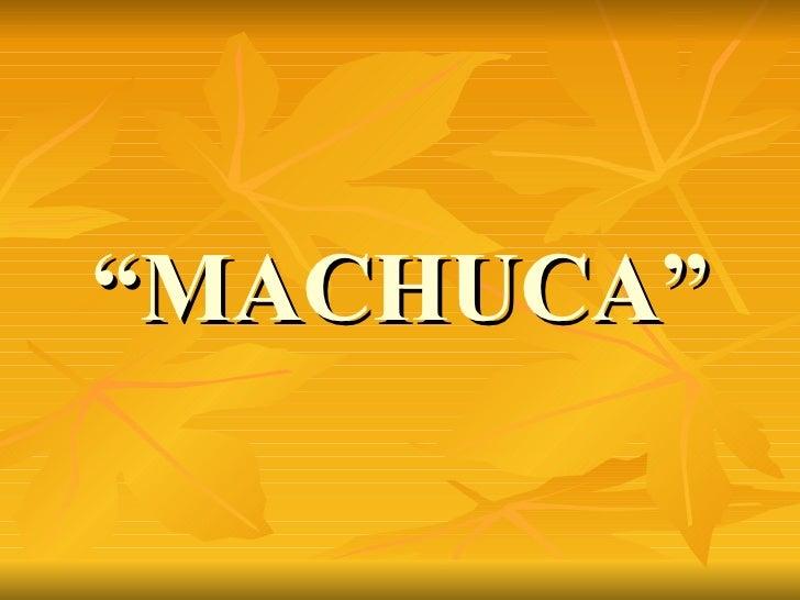 """ MACHUCA"""