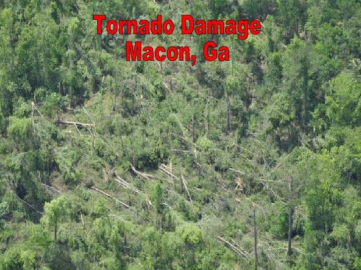 Tornado Damage Macon, Ga