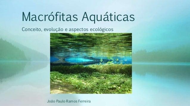 Macrófitas Aquáticas Conceito, evolução e aspectos ecológicos João Paulo Ramos Ferreira