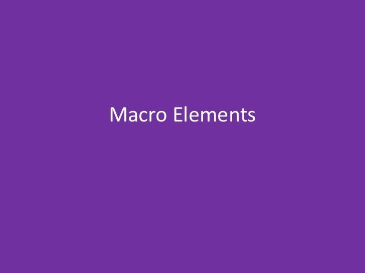 Macro Elements <br />