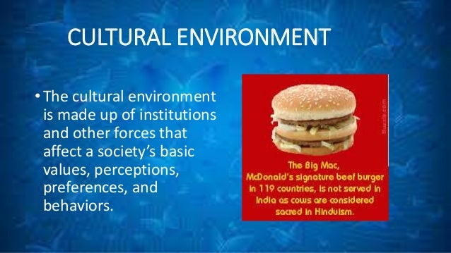Macro and micro factors influencing fast food industry in india
