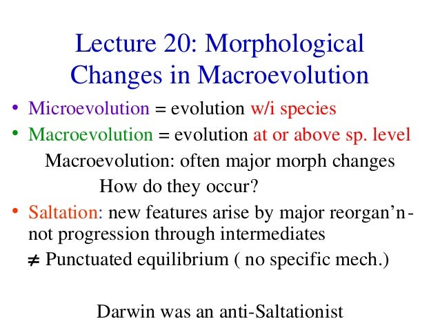 Lecture 20: Morphological Changes in Macroevolution