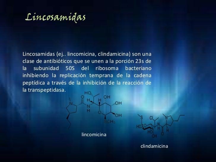 Macrolidos 2