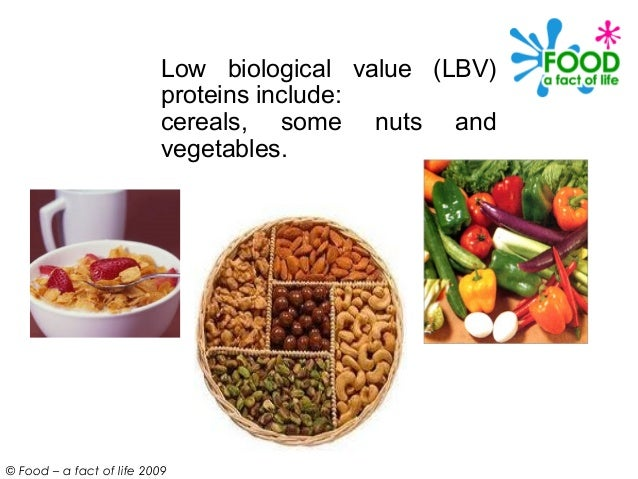 Low Biological Value Protein Foods