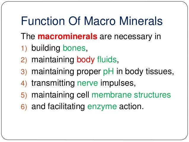 Trace minerals: what are they? And why are they important?