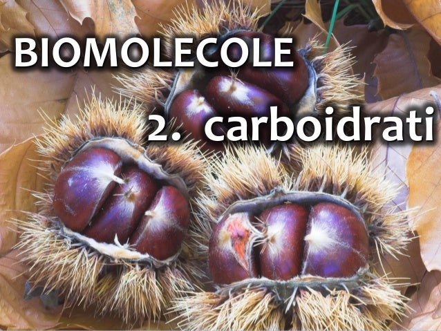 1 BIOMOLECOLE 2. carboidrati