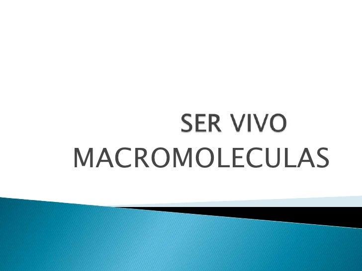 SER VIVO<br />MACROMOLECULAS<br />