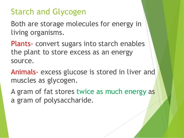 introduction to macromolecules Macromolecules webquest part 1: macromolecules tutorial here you will click through a series of four tutorials about the four major types of macromolecules use the website listed below to answer the following questions a b start by reading the introduction.