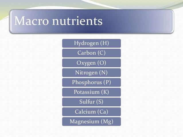 Macronutrients Role In Plants