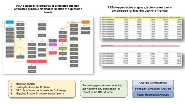 RNA-seq pipeline prepares all annotated and non- annotated genomic element estimation of expression levels Removing genomi...