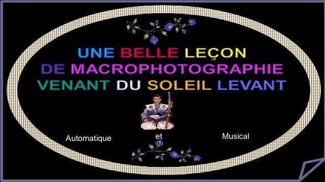 微距摄影              美丽的微距摄影Automatique     et      Musical
