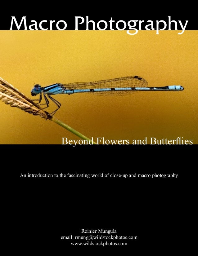 Macro Photography Beyond Flowers and Butterflies An introduction to the fascinating world of close-up and macro photograph...