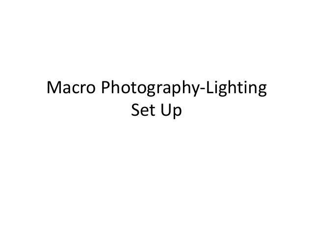 Macro Photography-Lighting Set Up