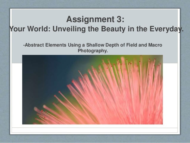Assignment 3: Your World: Unveiling the Beauty in the Everyday. -Abstract Elements Using a Shallow Depth of Field and Macr...