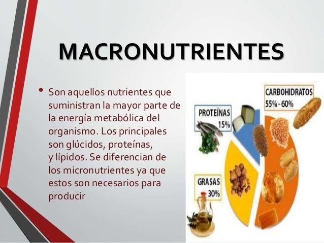 MACRONUTRIENTES Y MICRONUTRIENTES EPUB