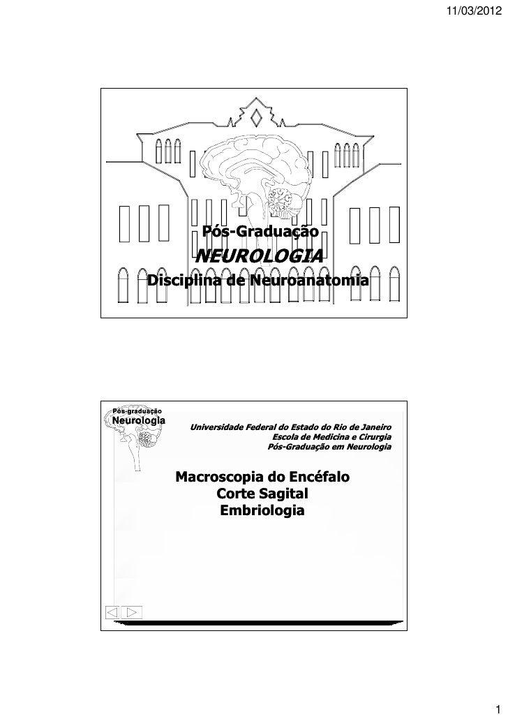 11/03/2012Pós-graduaçãoNeurologia                   Pós-Graduação                  NEUROLOGIA         Disciplina de Neuroa...