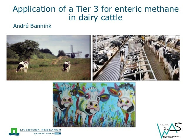 Application of a Tier 3 for enteric methane in dairy cattle  André Bannink