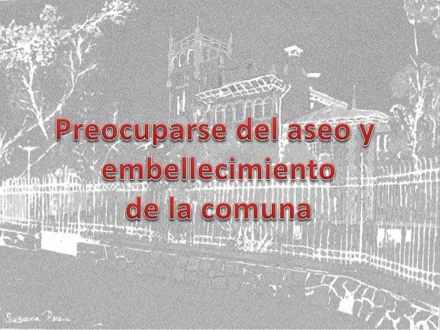 Susana Pereira Concejal Macul Slide 3