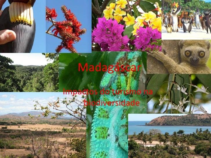 Madagáscar Impactos do turismo na biodiversidade