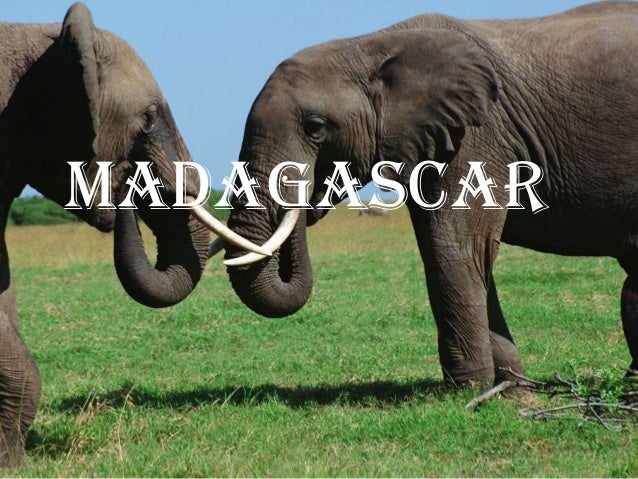Madagascar         r