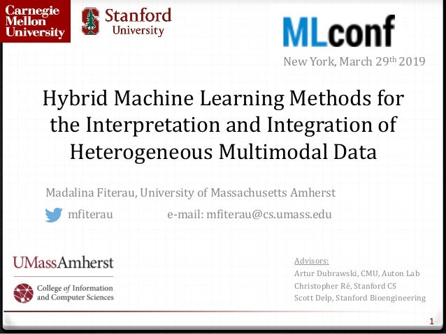 Hybrid	Machine	Learning	Methods	for	 the	Interpretation	and	Integration	of	 Heterogeneous	Multimodal	Data Madalina	Fiterau...
