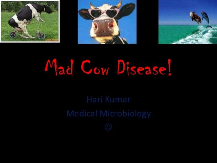 Mad Cow Disease!      Hari Kumar  Medical Microbiology           