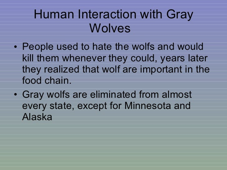 the importance of the article on inbreeding of wolves and the human interaction That nonmhc-d 2 is associated with health, a fitness-related trait, is consistent with several studies in non-human animals that report weak, positive relationships between genetic diversity (measured as mean d 2) at neutral markers and fitness-related traits , , , ,.