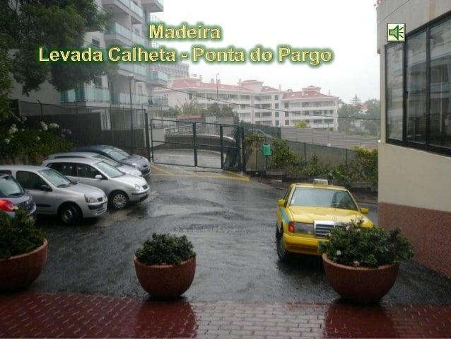 Madeira  - Levada Calheta - Ponta do pargo - 2009