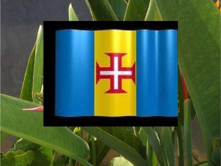 Madeira2010