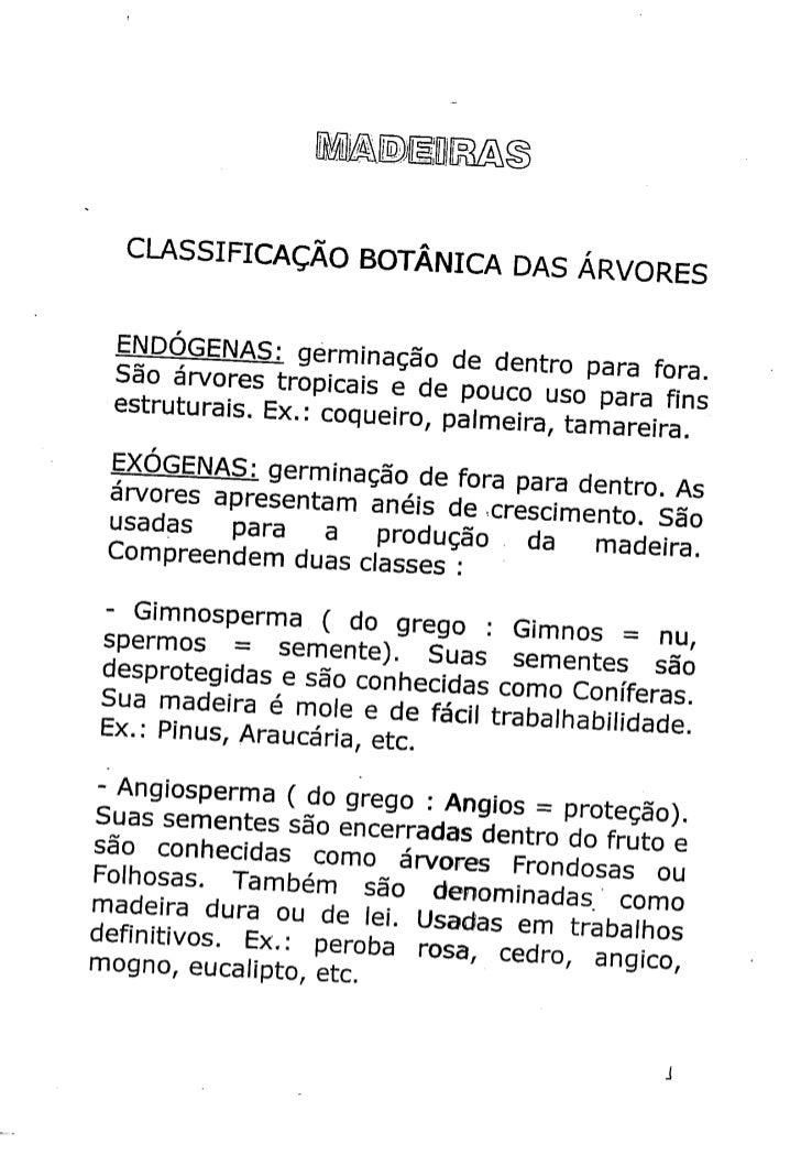 Madeira - classificação botânica