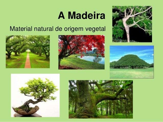 A Madeira Material natural de origem vegetal