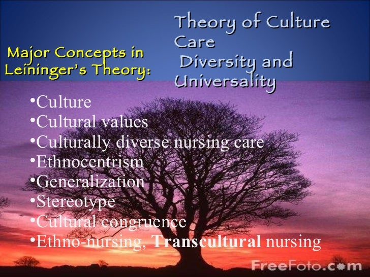 Major Concepts in  Leininger's Theory: <ul><li>Culture </li></ul><ul><li>Cultural values </li></ul><ul><li>Culturally dive...