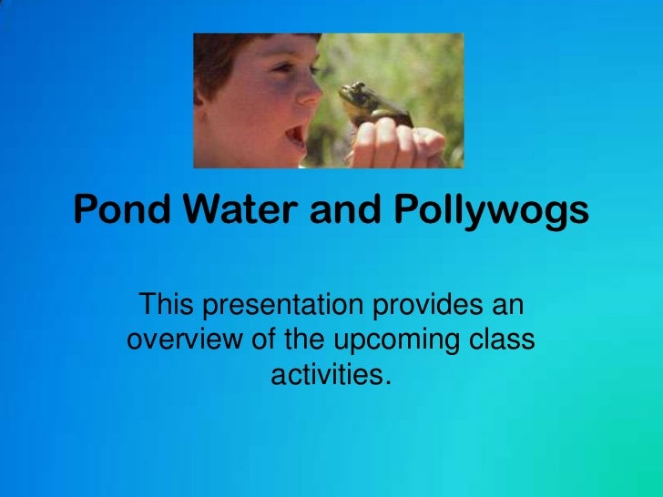 Pond Water and Pollywogs<br />This presentation provides an overview of the upcoming class activities.<br />