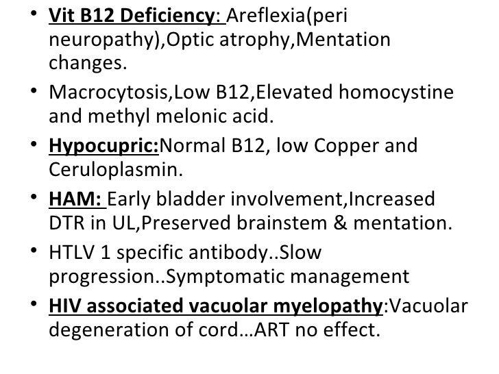Non-Compressive Myelopathy