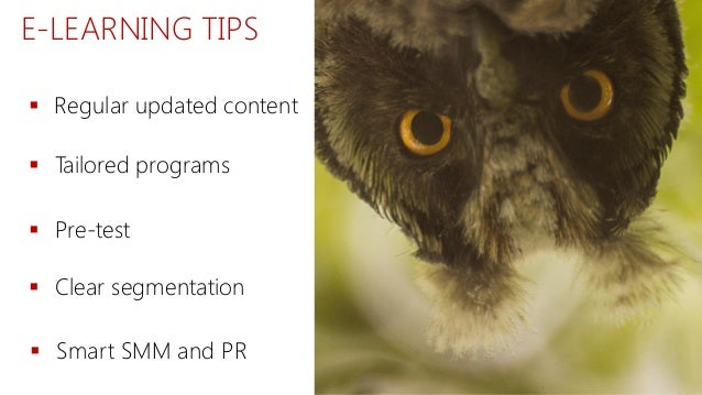 E-LEARNING TIPS  Regular updated content  Tailored programs  Pre-test  Smart SMM and PR  Clear segmentation