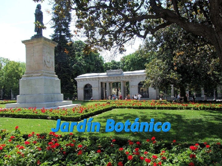 Madrid jard n bot nico for Jardin botanico madrid metro