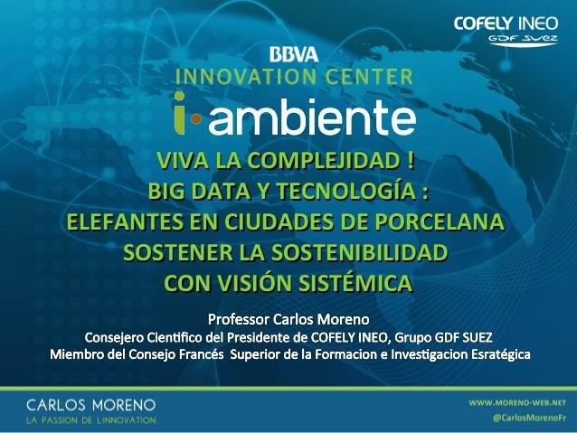 VIVA LA COMPLEJIDAD ! BIG DATA Y TECNOLOGÍA : ELEFANTES EN CIUDADES DE PORCELANA SOSTENER LA SOSTENIBILIDAD CON VISIÓN SIS...