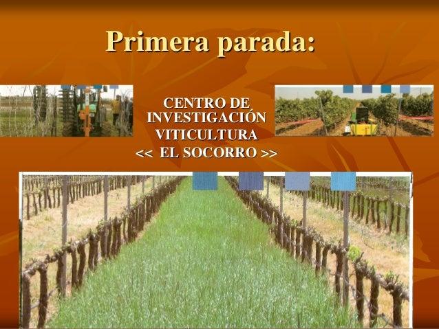 Primera parada:     CENTRO DE   INVESTIGACIÓN    VITICULTURA  << EL SOCORRO >>