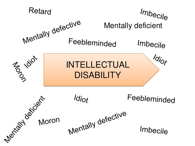 Understanding persons with intellectual disabilities essay