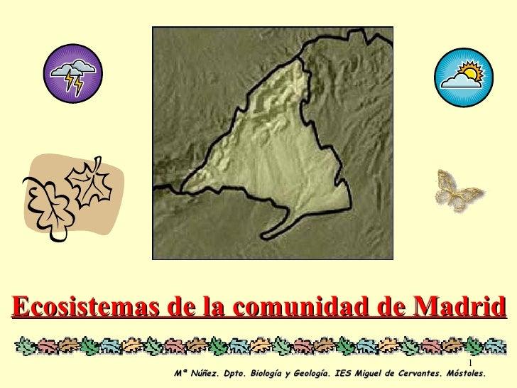 Ecosistemas de la comunidad de Madrid Mª Núñez. Dpto. Biología y Geología. IES Miguel de Cervantes. Móstoles.