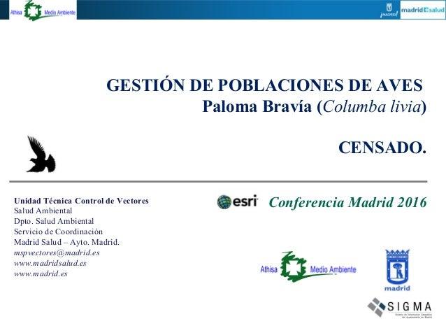 GESTIÓN DE POBLACIONES DE AVES Paloma Bravía (Columba livia) CENSADO. Conferencia Madrid 2016Unidad Técnica Control de Vec...