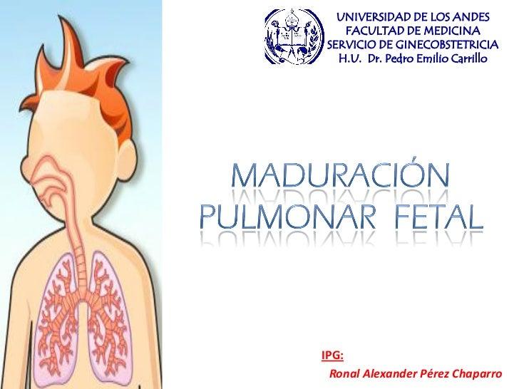 UNIVERSIDAD DE LOS ANDES     FACULTAD DE MEDICINA  SERVICIO DE GINECOBSTETRICIA    H.U. Dr. Pedro Emilio Carrillo     IPG:...