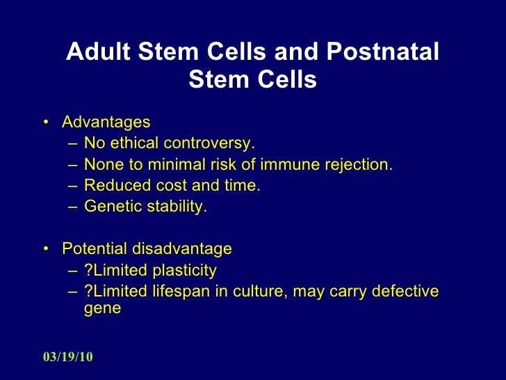 Ethics stem cells essay