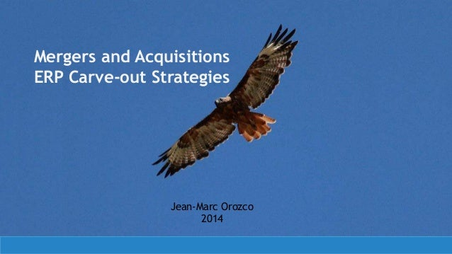Mergers and Acquisitions ERP Carve-out Strategies  Jean-Marc Orozco 2014