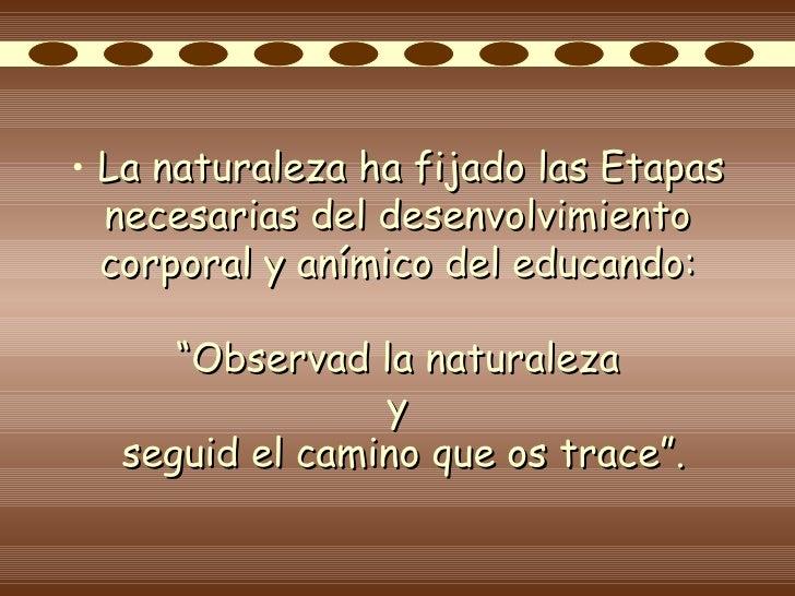 MaestríA Diversidad DidáCtica Rosseau Consideraciones Pedagogica Slide 2