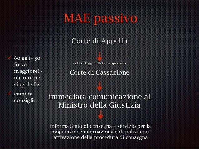 """procedura MAE passivo: arresto provvisorio """"match"""" del SIS (""""red notice"""") arresto PG (art. 11) h48 habeas corpus ordinanza..."""